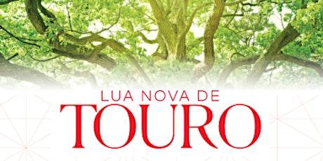 Lua Nova de Touro | 2020 | SP ingressos