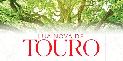 Lua Nova de Touro | 2020 | SP