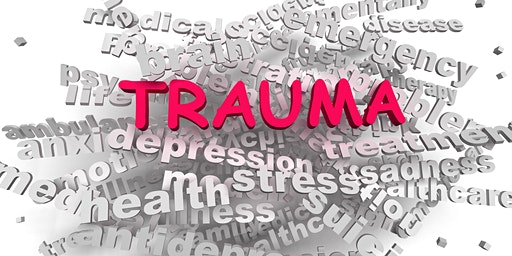 Building Trauma Informed Systems - How Trauma Affects Us and Those We Serve