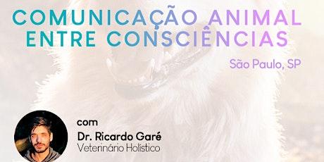 Curso Inicial Comunicação Animal no Santuário Animal Rancho dos Gnomos - SP - 11 e 12 de abril ingressos