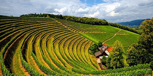Sommelier Series: Wines of Burgundy