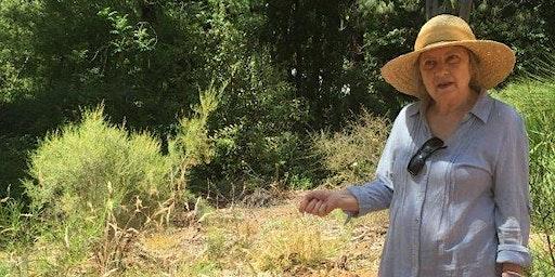 Native Grasses Walk and Talk