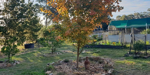 Autumn Harvest Farm Tour