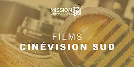 Films CinéVision Sud du 25 au 30 janvier 2020 billets