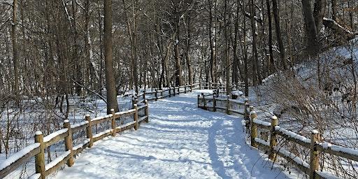 Copy of Rosedale Ravine - Yellow Creek Hike