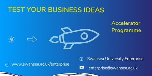 Swansea University Accelerator Programme