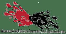 BADCAP - The Beaudesert and District Community Art Project Ass. Inc logo