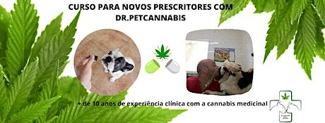 CURSO PARA NOVOS PRESCRITORES-CANNABIS MEDICINAL ingressos