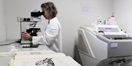 Les financements européens  en faveur de la recherche et de l'innovation