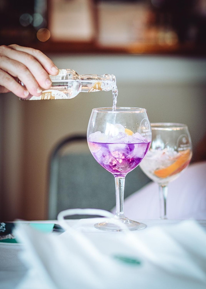 Winter Gin Festival 2020 at The Greenbank Hotel image