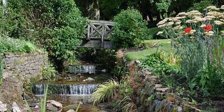 Garden  Workshop 'Gardening With Containers - Autumn & Winter Highlights' tickets