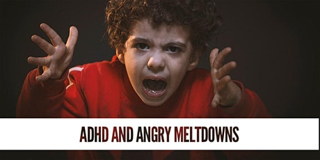 ADHD, SPD, Anxiety, Angry Meltdown: Addressing the CAUSE! tickets