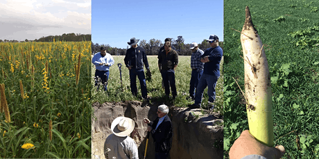 Soil Health and Cover Cropping Workshop tickets