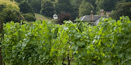Danebury Vineyards Cellar Door Days tickets