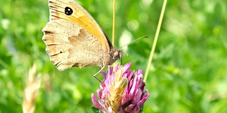 Gardening with Nature - 19th June 2020 tickets