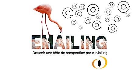 M6 - Formation prospecter par e-Mailing billets