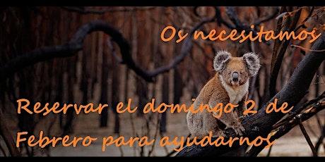 Paellas for Koalas Fundraising, apoyamos con orgullo WWF-Australia tickets