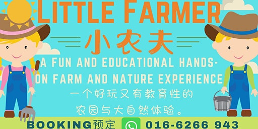 Little Farmer 小农夫