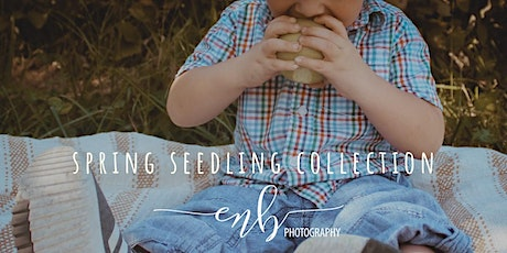 Spring Seedling Collection: Mini Sessions tickets