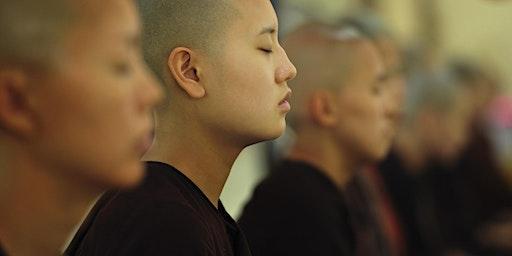 Cervello e Meditazione: effetti e benefici