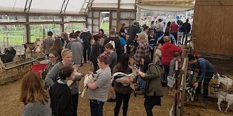 Celebrity Dairy Open Barn tickets