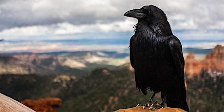 Raven Management Workshop and Forum - POSTPONED tickets
