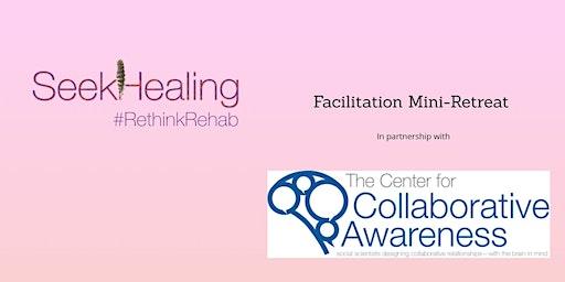 SeekHealing Facilitation Mini-Retreat