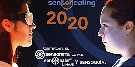 Taller de Introducción: Certifícate como Sensohealer tickets