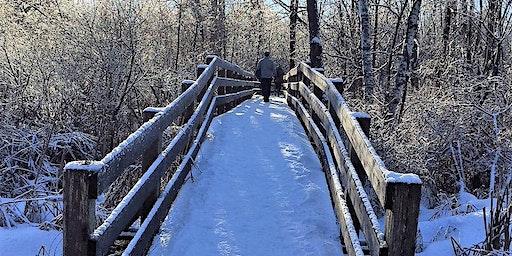Winter Wonder Forest Bathing Walk