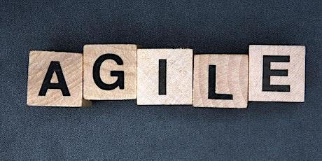 Être et Agir en leader agile billets