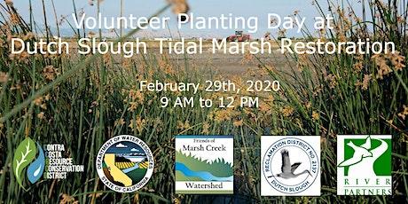 Volunteer Planting at Dutch Slough Tidal Marsh Restoration tickets