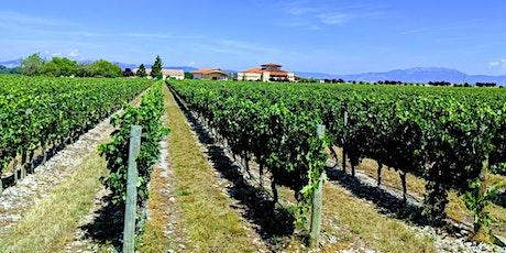 Wine Class - Discover the wines of La Rioja! tickets