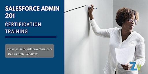 Salesforce Admin 201 Certification Training in Harrisburg, PA