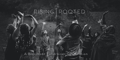 Rising Rooted - A Bloodroot Fundraiser Celebration