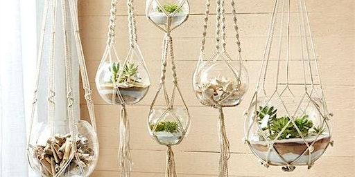 Sips & Stems- Hanging Terrariums