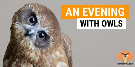 An Evening With Owls tickets