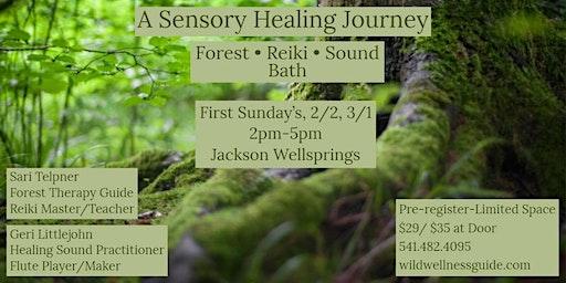 A Sensory Healing Journey: Forest • Reiki • Sound Bath