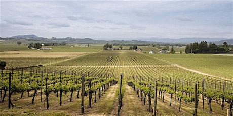 Vineyard Dinner - Red Winery Vineyard tickets