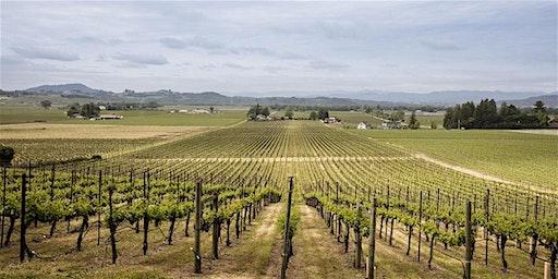 Vineyard Dinner - Red Winery Vineyard