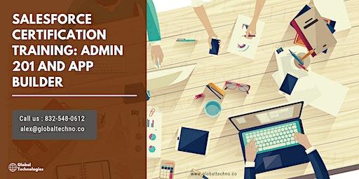 Salesforce Admin201 and AppBuilder Certificat Training in Bloomington, IN