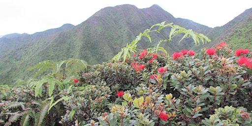2020 Rapid ʻŌhiʻa Death Symposium  -East Hawaiʻi