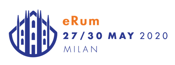 eRum2020 on site conference (cancelled and turned into virtual conference) image