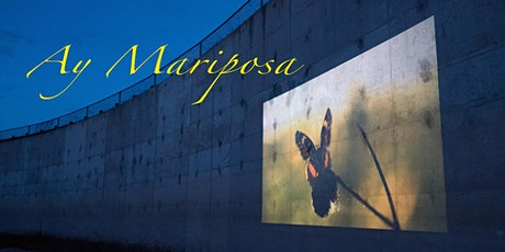 Ay Mariposa (March 7 @Waukegan Public Library) tickets