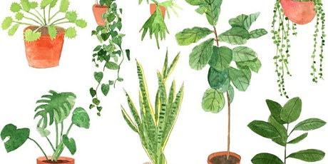 Introduction to Horticulture: Houseplants 101 tickets