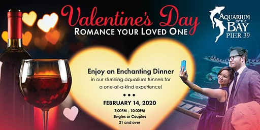 Valentine's Day Dinner at Aquarium of the Bay