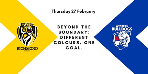 Beyond the boundary:  Different Colours.  One Goal.