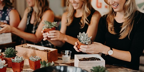 DIY Succulent Centerpiece Workshop @ Bare Back Grill tickets
