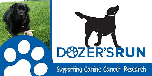 Dozer's Run Supporting Canine Cancer Research