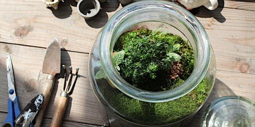 Closed Jar Terrarium Workshop