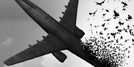In Memory of Flight PS752 tickets